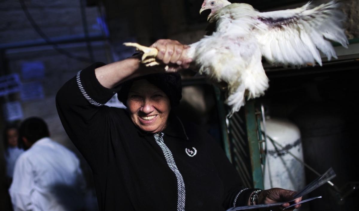 работы отделений ритуал с черной курицей сколько второе