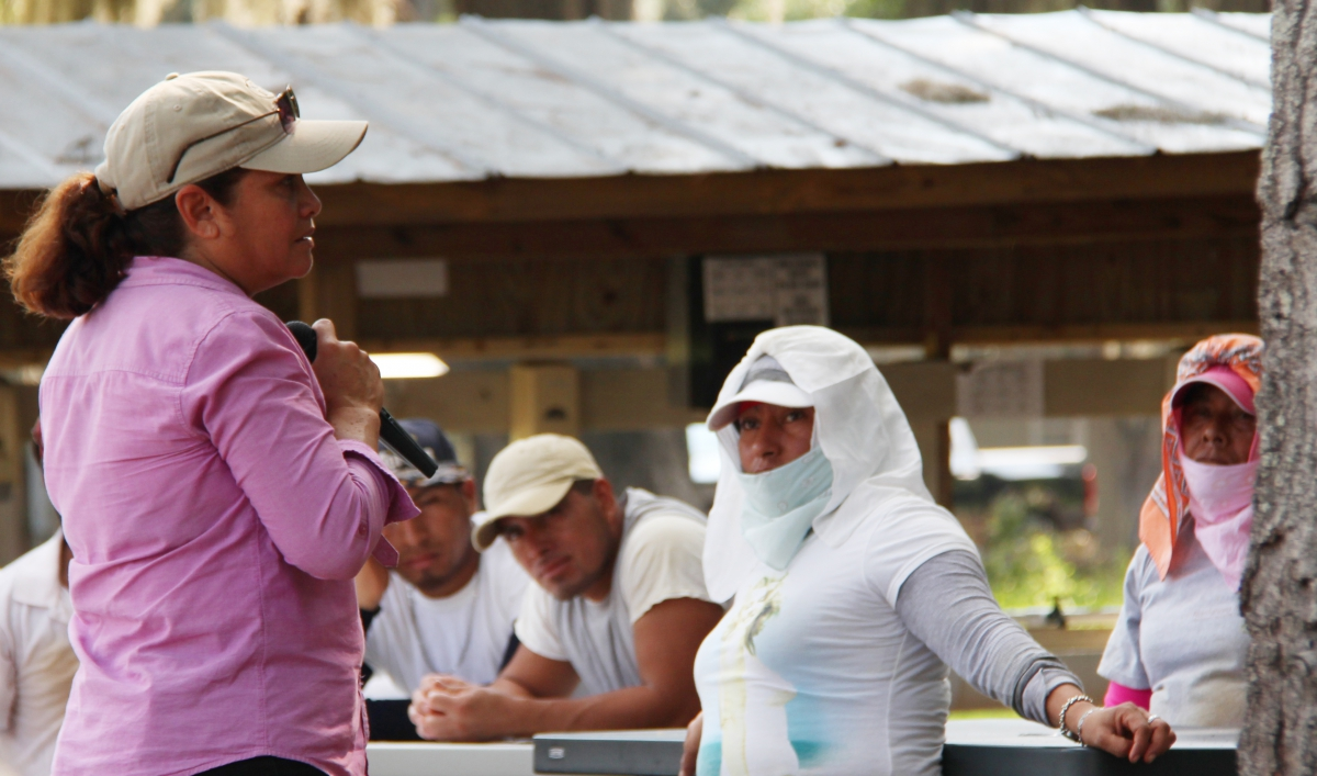 Lessons for hollywoods women from tomato pickers in florida lessons for hollywoods women from tomato pickers in florida public radio international xflitez Choice Image
