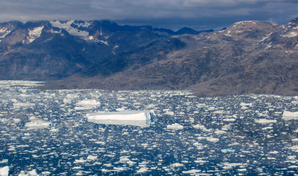 climate change a greenland perspective Ice is one of the first reactors to a climate change,  a glacier perspective  mostly in the interior of east greenland ice sheet,.