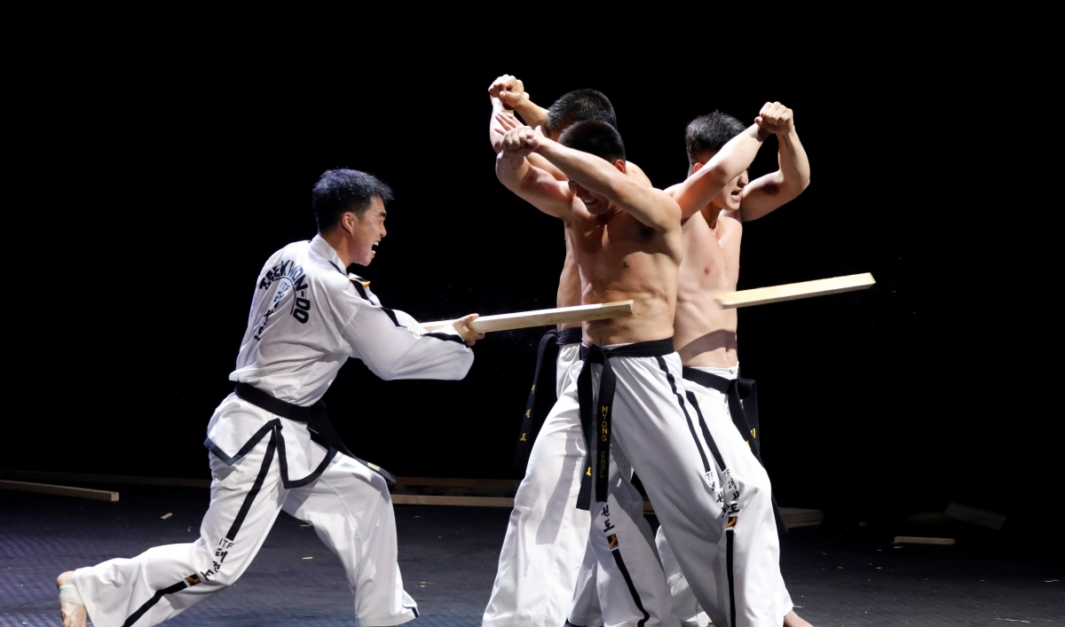 speech for taekwondo The professional taekwondo sotfware version was created for all the taekwondo professors, coach, trainers and athletes who want to efficiently and professionally automate their training plans and class.