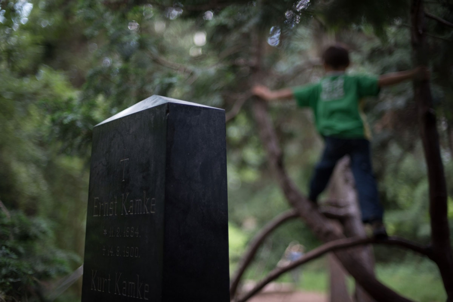 A young guest climbs a tree near a headstone in Berlin's Leise Park, a former cemetery in Berlin, Germany's hip neighborhood of Prenzlauerberg. The children in the park all report having favorite headstones and trees in the small, walled-off garden park.