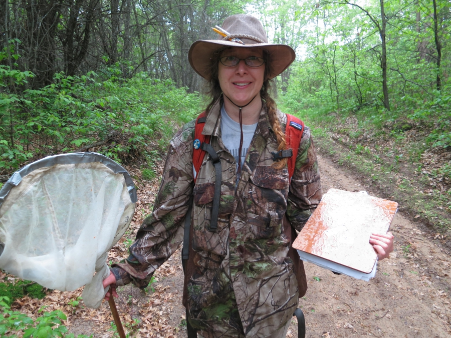 Elaine Evans is studying bee populations at Uncas Dunes Scientific and Natural Area near Elk River, Minnesota, one of few places where there are historical records of bees. She says that while honeybees are not in danger of extinction, some wild bees are.
