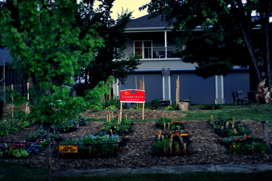 A community garden next to a residence