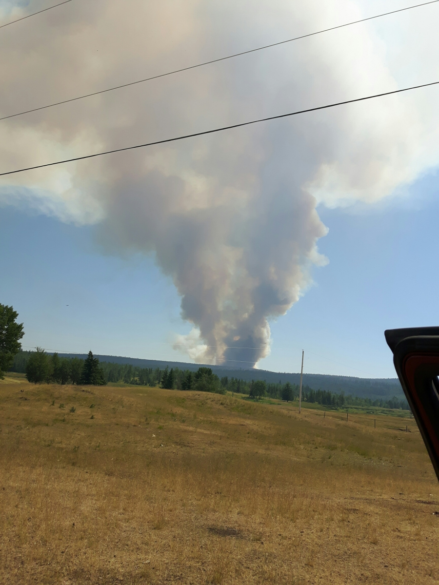On July 6, Lynn Landry could see a column of smoke in the distance from a nearby forest fire. The fire advanced until it consumed the ridge near her house and she had to evacuate.
