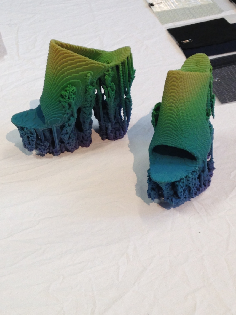 A 3-D printed shoe.