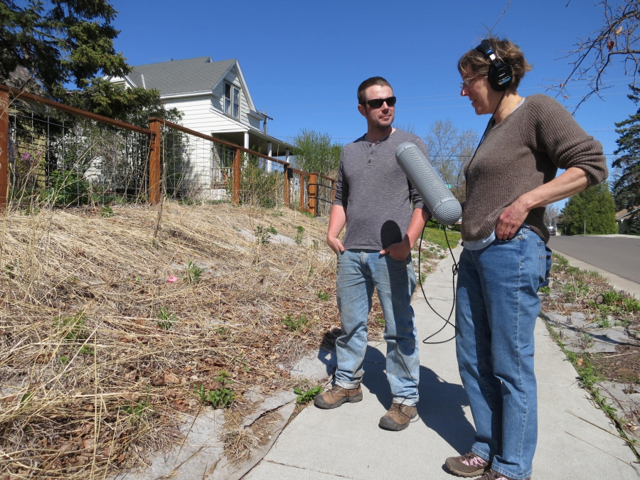 Dan Schutte dug up his lawn in Duluth, Minnesota and put in native plants. He tells producer Catherine Winter that while it looks scraggly in early spring, when it's blooming it's a haven for bees and butterflies, and that he idea is starting to cathc on