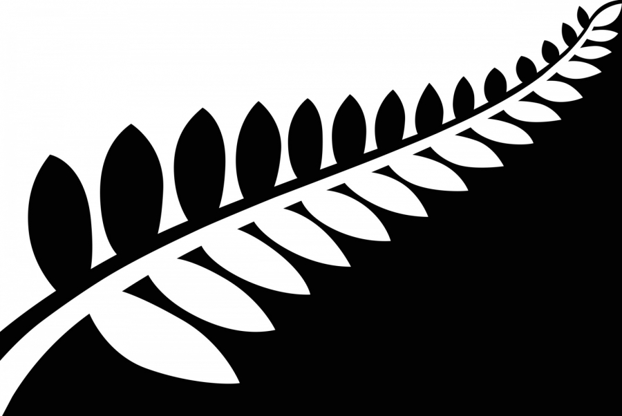 Black & White Fern
