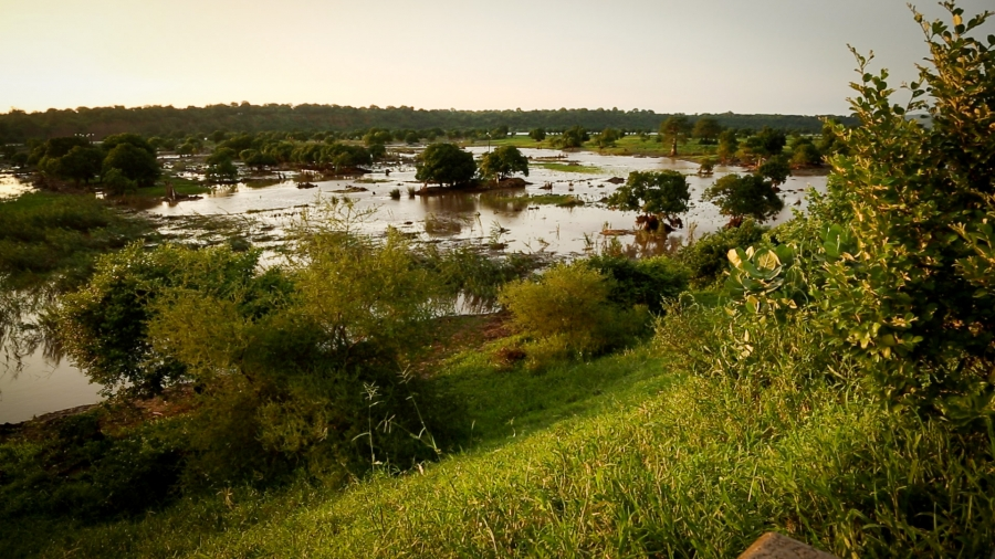 The flooding has been centered around the Shire River in southern Malawi. Ongoing heavy rains continue to cause water levels to rise and fall daily and occasionally push the river over its banks.