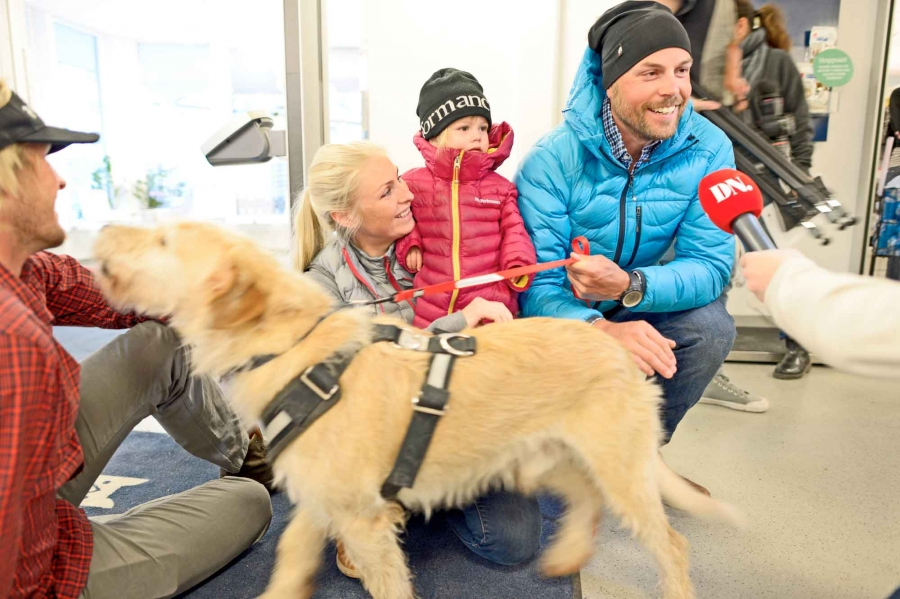 Fix Bad Credit >> An Ecuadorian stray dog named Arthur finds his forever home in Sweden | Public Radio International