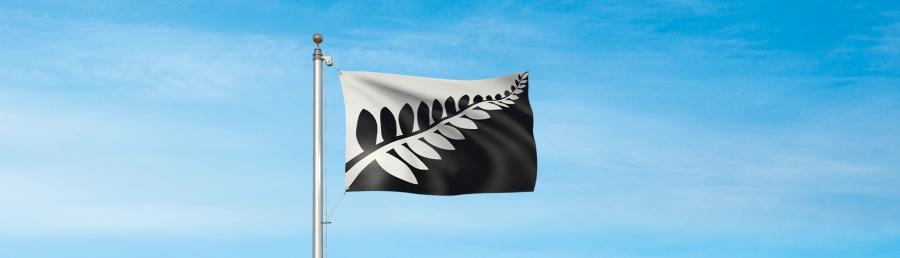 Silver Fern flag