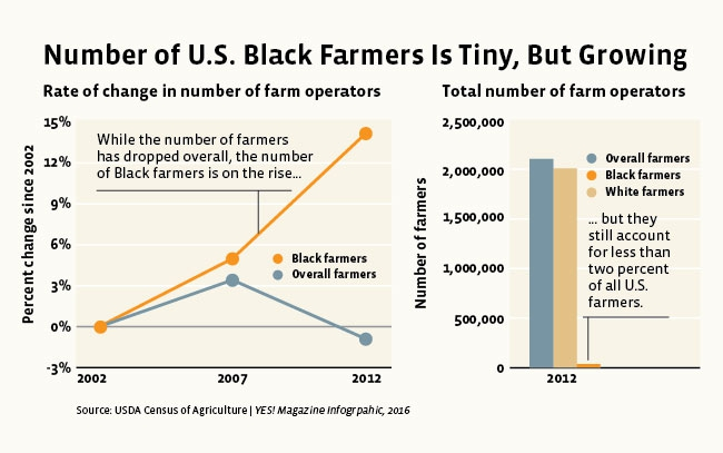 black farmers graph
