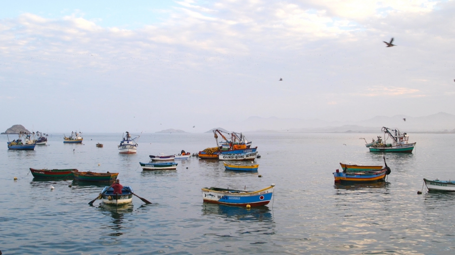 Boats bob next to the tiny fishing village of Puerto Huarmey, Peru.