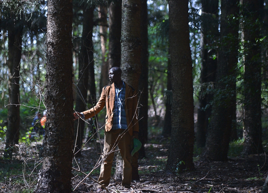 Elias Maiyo, a member of the marginalised Sengwer community indigenous to Embobut forest, one of thirteen forest reserve blocks located in the Cherangani Hills on the western ridge of the East African Rift.