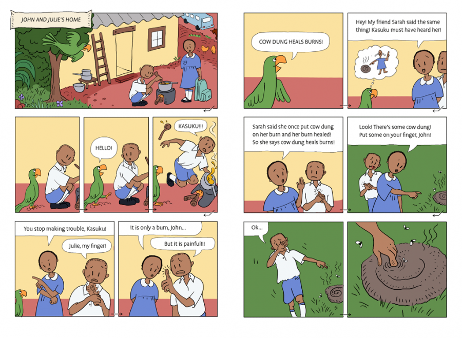 comic text book dispelling myth that cow dung helps heal burns.