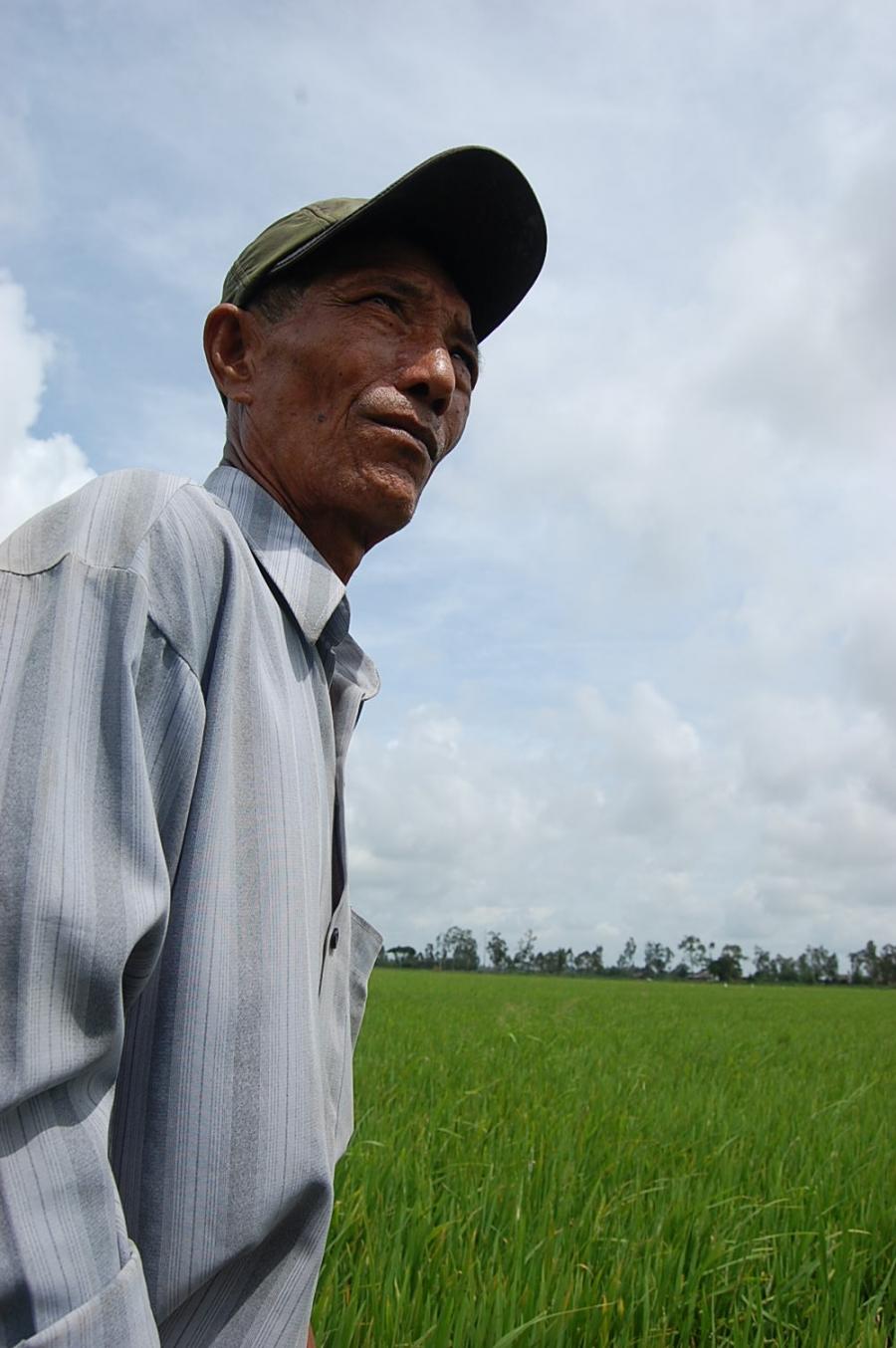 Rice farmer Hai Thach on his farm in Soc Trang Province.
