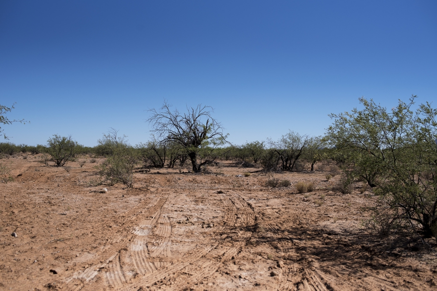 Desert scene with deep grooves in the ground