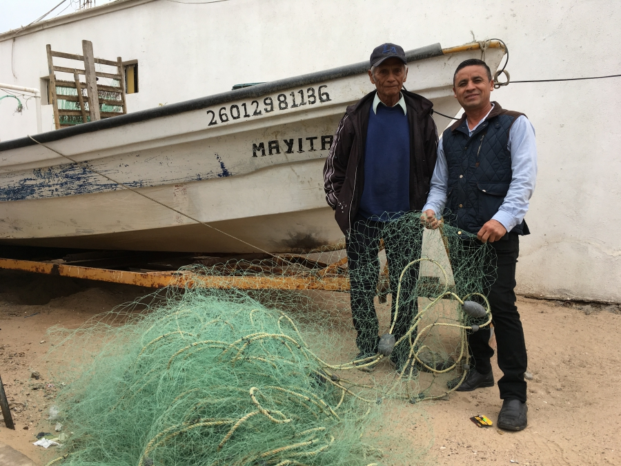 Fishermen in and around Puerto Peñasco, Mexico say they often have no choice but to fish illegally for the totoaba, whose swim bladders can fetch up to $10,000 as a traditional medicine in China. But getting caught in gill nets meant for totaba is the mai