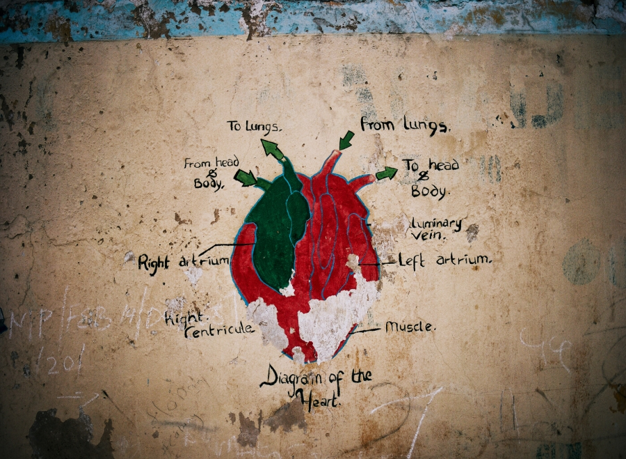 A diagram of a heart on the walls of a school in Kano.