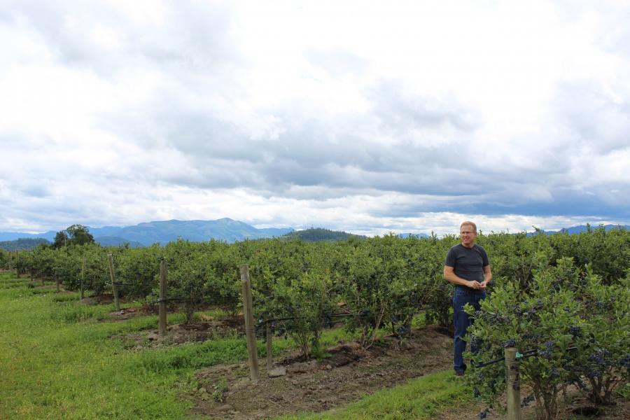 A man in a field, big sky