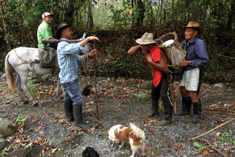 These are community elders carrying wood, supplies in preparation for 19th anniversary.