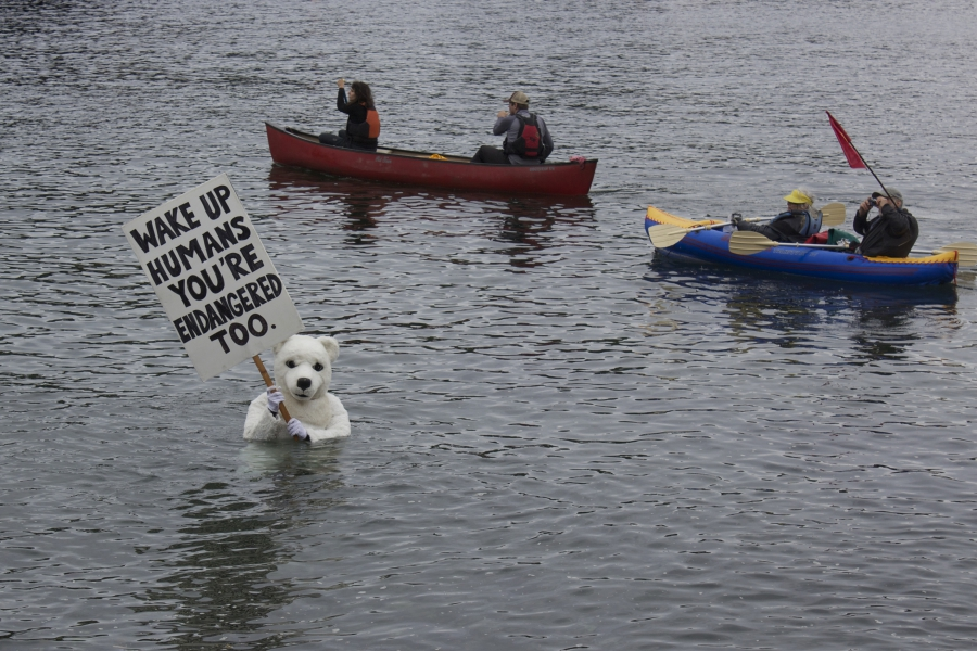 "An anti-drilling protester poses as an endangered polar bear during the ""paddle in Seattle"" demonstrations. The habitat of polar bears is threatened by climate change."