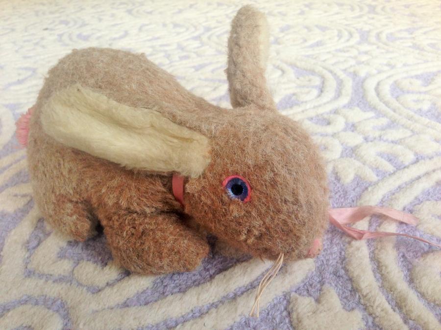 Tamar Charney's stuffed bunny