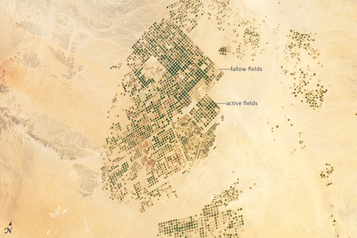 By the time astronauts aboard the International Space Station took this photo in 2012, Saudi Arabia had begun fallowing its fields.