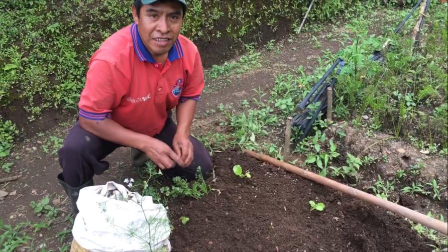 Farmer Juan Ujpan