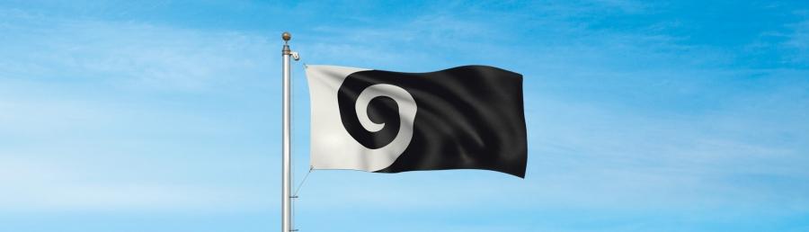 Koru flag