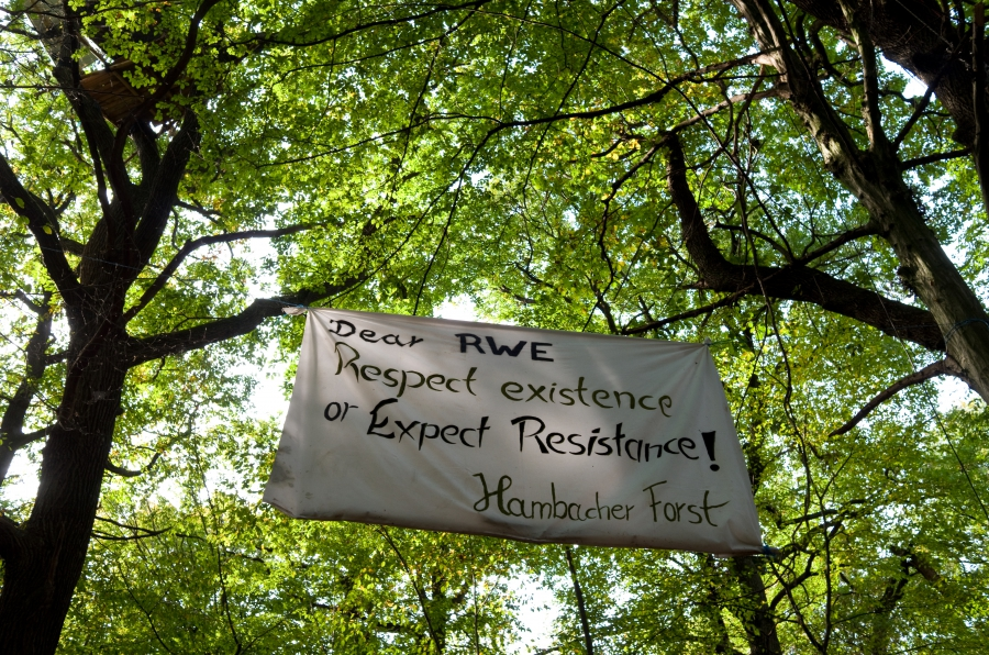 The climate camp in Germany's Hambach Forest.