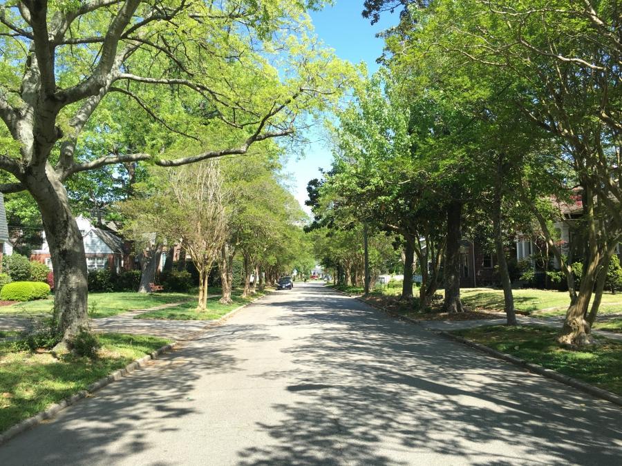 Leafy Norfolk street