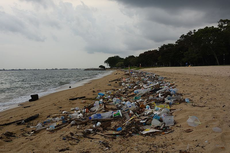 Plastic waste pollution on a Singapore beach, April 2015.