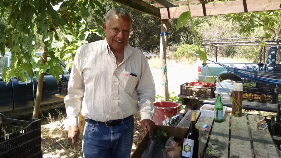 Menkir Tamrath began growing Ethiopian peppers on a large scale after his Bay Area tech company downsized.