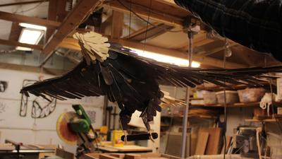 Offerman eagle