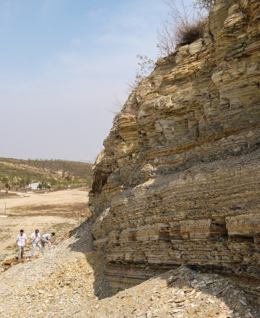 Fossil hunters have found many well preserved specimens in shale formations around Sihetun