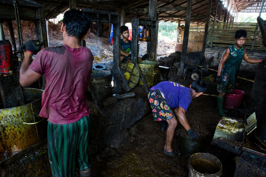 Men work in an oil mill at Asia World palm oil plantation in Bank Mae Village, Myanmar, Nov. 11, 2016. Here, workers take the softened oil palm fruit and prepare it to be pressed into oil.