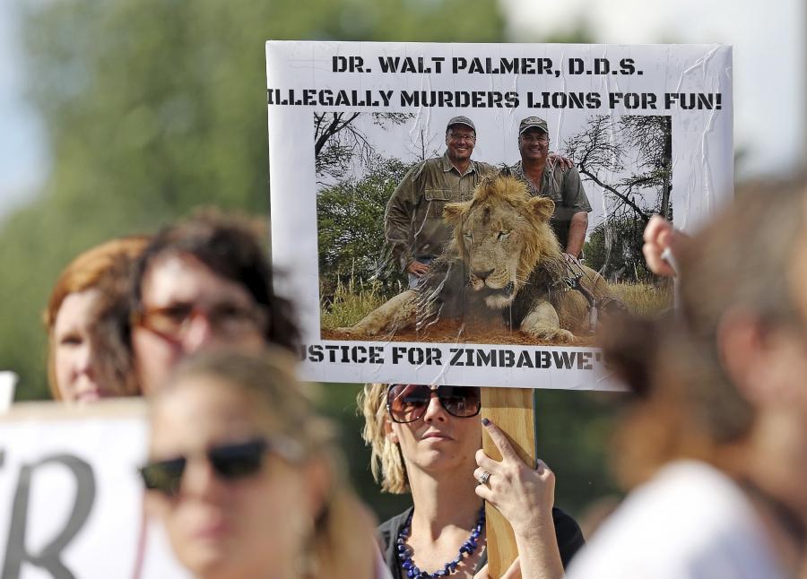Zimbabwea Hunter