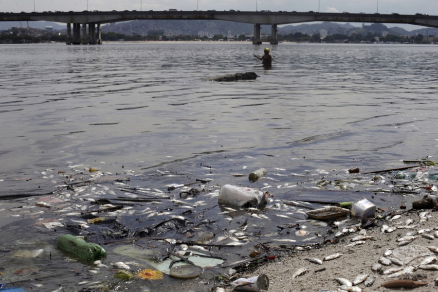 Dead fish lie on the shore of Guanabara Bay in Rio de Janeiro in January, not far from a Summer Olympics venue.