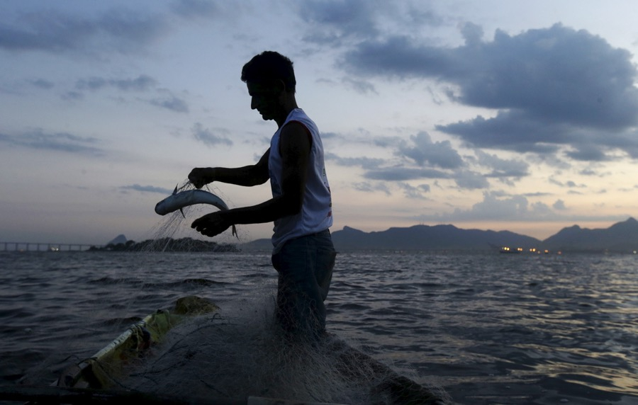 A man holds a fish caught in his net in Guanabara Bay on Jan. 8, 2016.