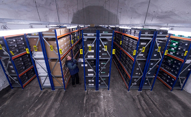 Seeds warehouse