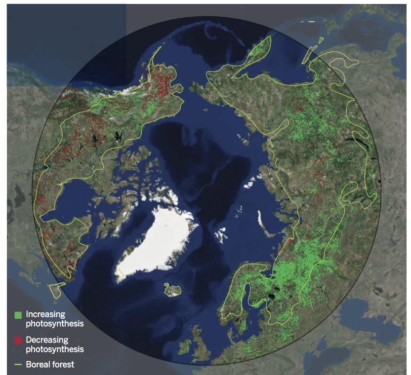 Satellite browning and greening