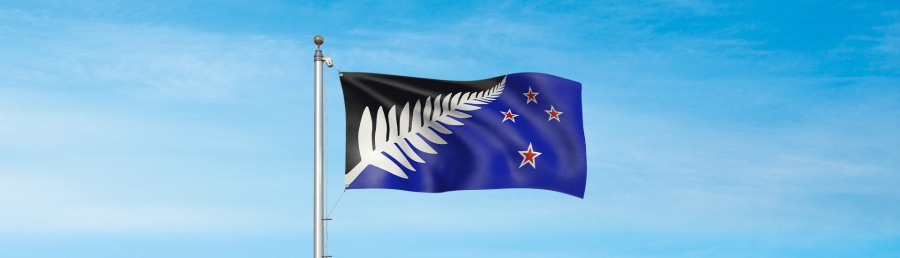 Silver Fern: Black, White, and Blue