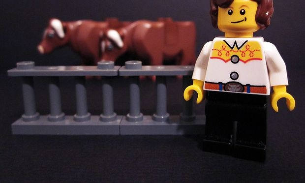 Temple Grandin Lego minifigure