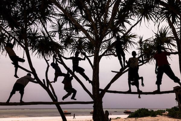 Art Wolfe Zanzibar
