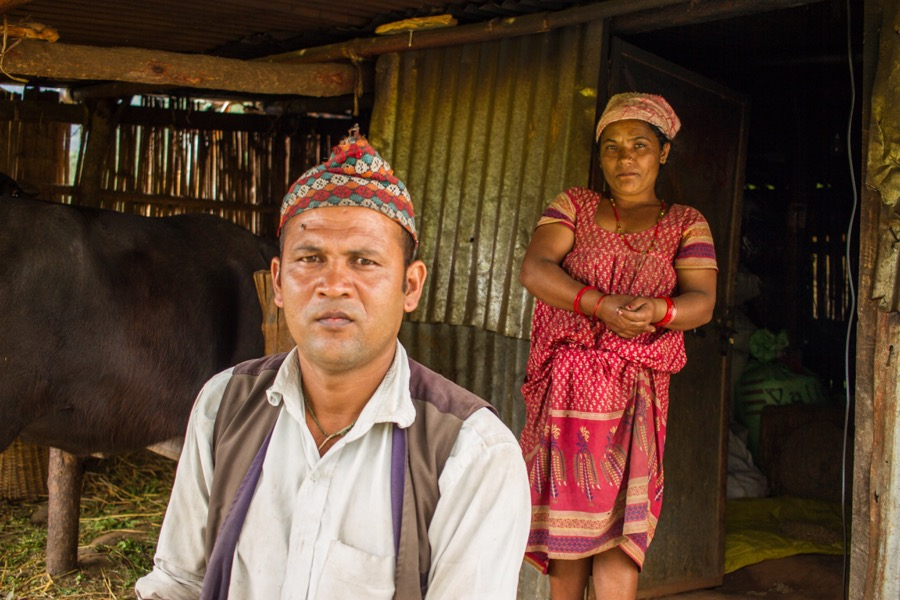Min Bahadur Pandit has been living in a tin shelter with his wife, two kids, buffalo and goats since Nepal's 2015 earthquake.