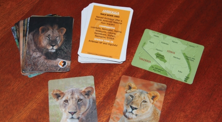 Trading card-like images and descriptions of lions help Lion Guardians distinguish among individual animals as they work to minimize human-lion conflict.
