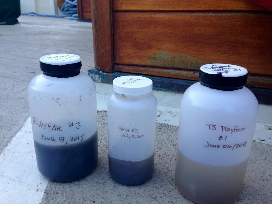Water samples from Lake Ontario, Canada.
