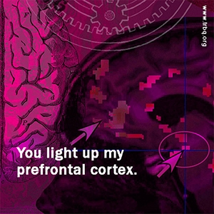 You light up my prefrontal cortext