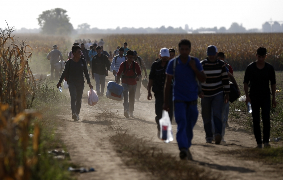 Migrants approach the Croatian border near the town of Sid, Serbia, Sept. 18, 2015.
