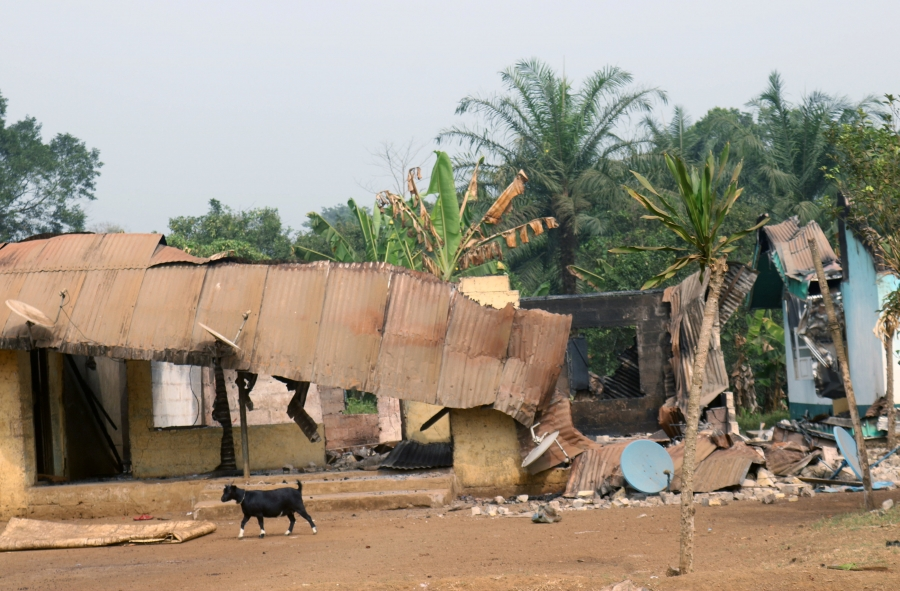 A goat walks past burned and damaged buildings in Kembong, south-west region of Cameroon Dec. 29, 2017.